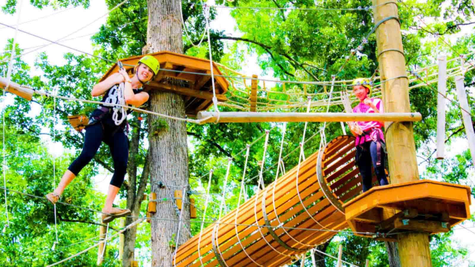 Adventure Designs Training Aerial Adventure Parks Pure Outdoor Fun